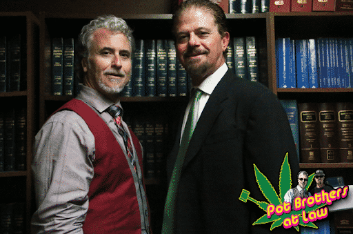 Pot Brothers at Law | Pot Brothers Appearances